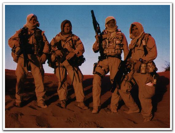 Desert Seals