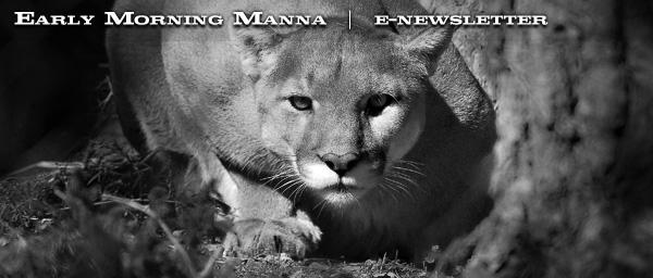 manna216-blast_01